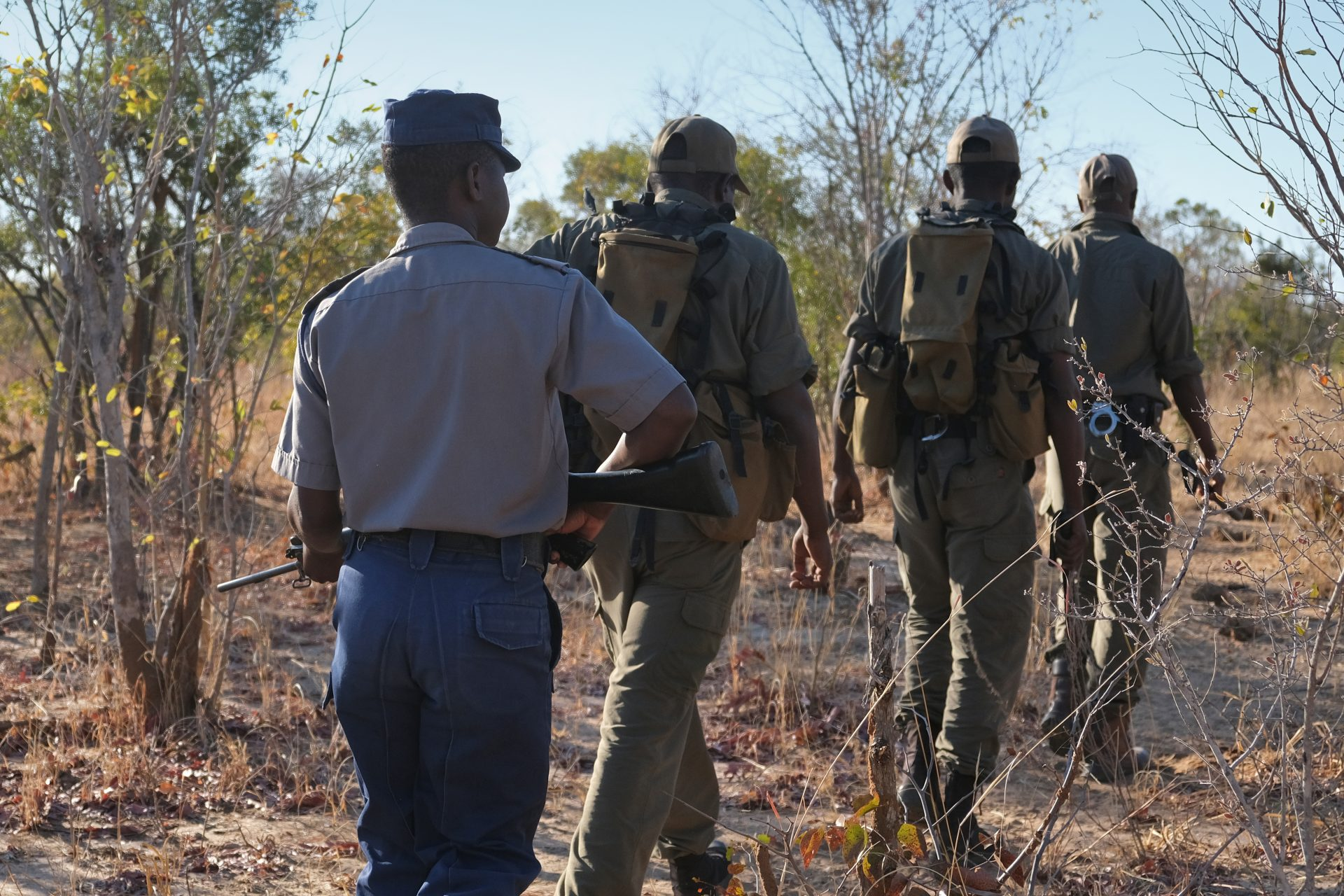 Conservation & Wildlife Fund - Anti-Poaching Unit