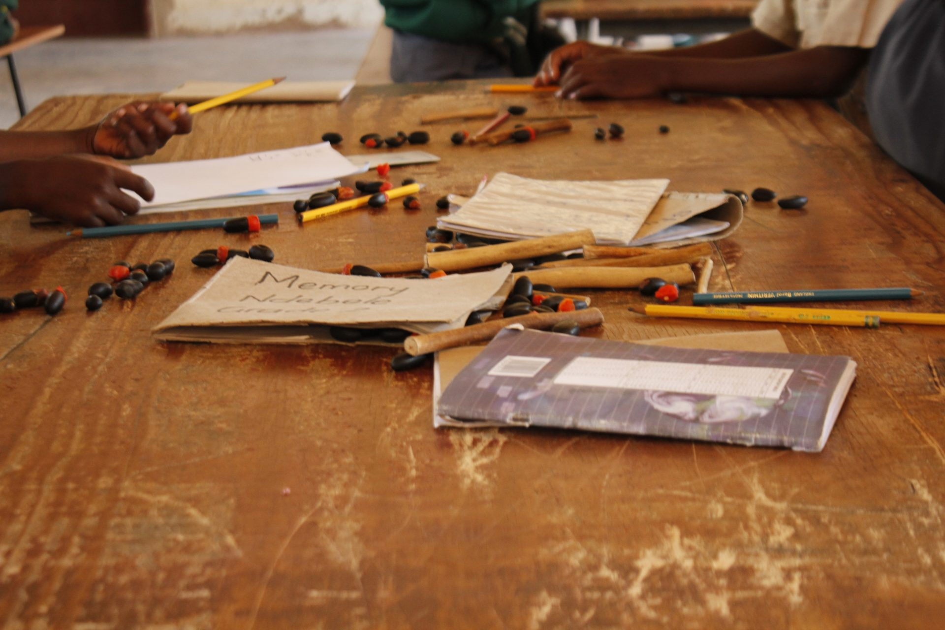 Ruzivo Scholarship and Book Fund