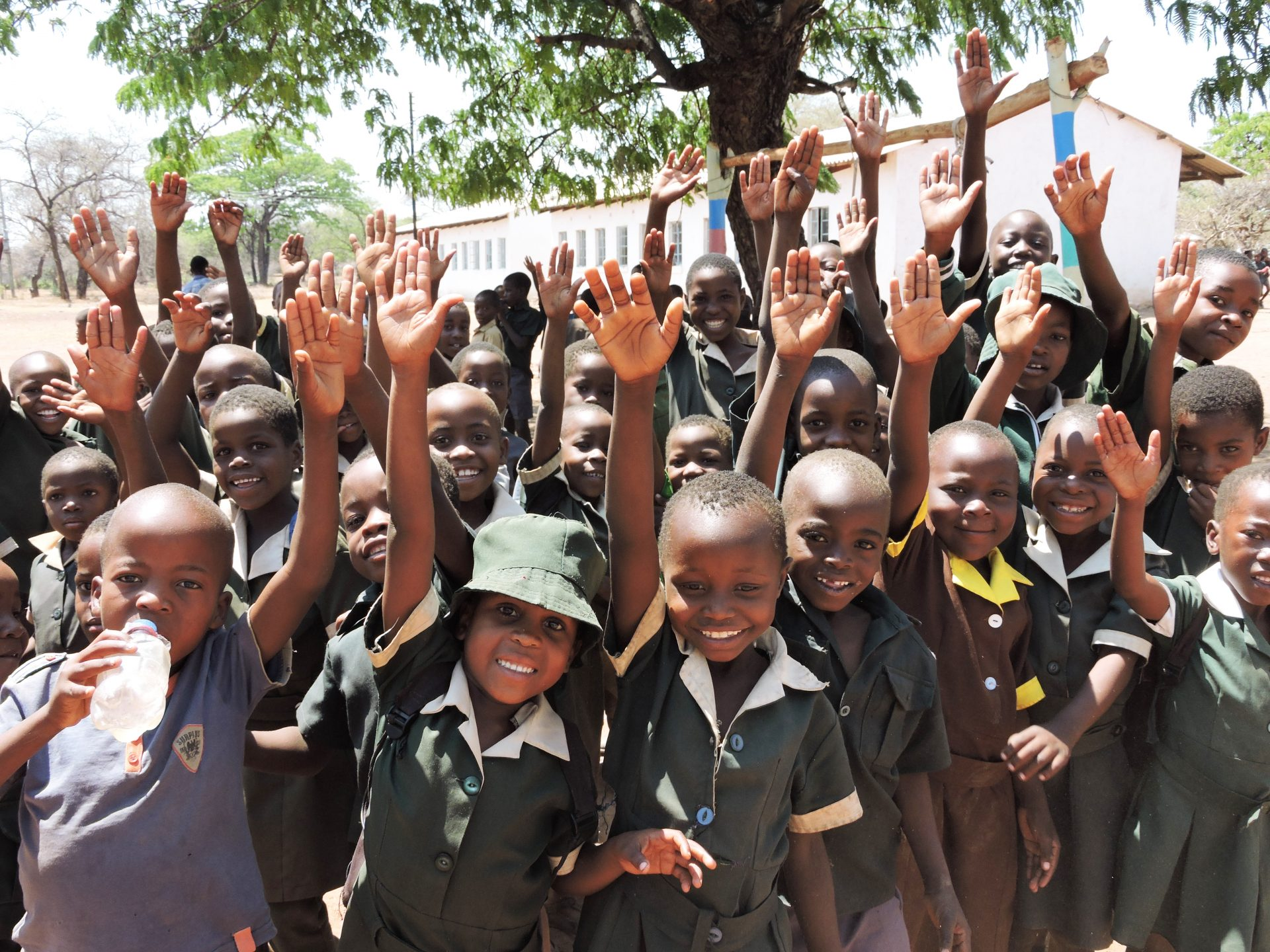 Grow Africa | Dingani Primary School Learners